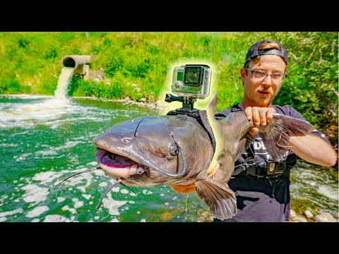 I Strapped A GoPro To a Catfish!!! (Underwater Spillway Foot