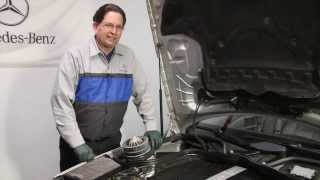 1996 to 2006 Mercedes Benz Part 10: Neglect Maintenance and It Will Cost You