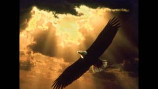 Rune Edvardsen - Free Like an Eagle