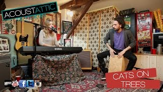 CATS ON TREES - Jimmy - Acoustattic Session S01E12