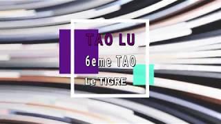 Les Educatifs Tao Lu   6ème Tao LE TIGRE