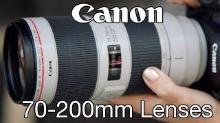 Canon 70-200mm f2.8 & f4 Lenses