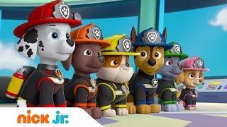 Nick Jr. в кино: Щенячий патруль возвращается! 🐕| Nick Jr. Россия