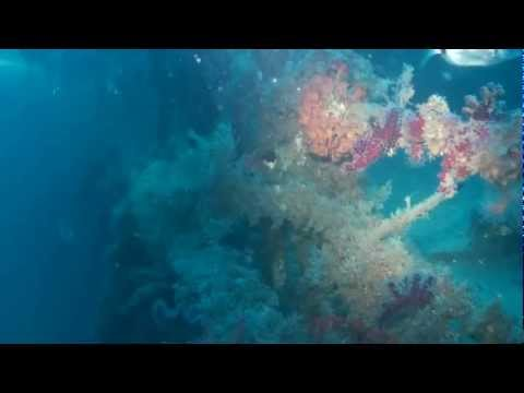 Thetis Wreck Immersione
