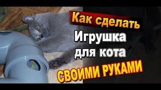 видео тоннель для кошки