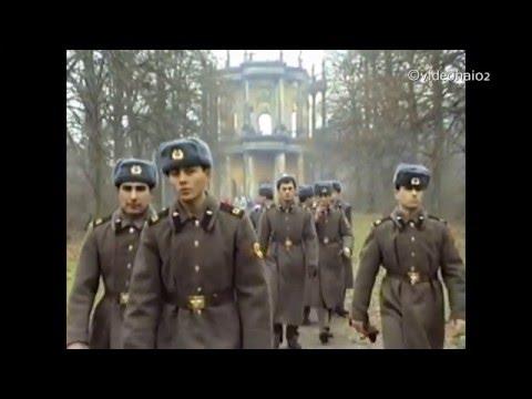 14.1.1990 Potsdam Sanssouci Park . Als vieles noch Ruine war