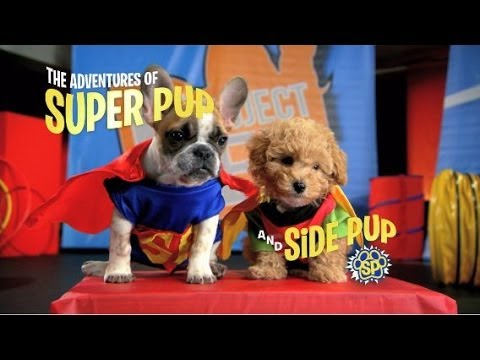 "The Adventures of Super Pup and Side Pup  - ""Robot Dog"""