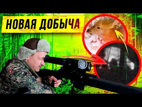 Реальная Охота Зимой! Ходовая охота на оленя 2020