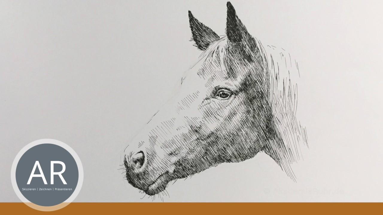 Pferde Zeichnen Lernen Pferdekopf Malen Mappenkurs Kunst Auf Lehramt
