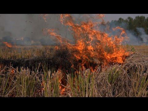 Delhi holds breath as burning farms herald pollution season