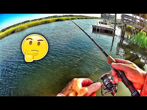 Inshore Dock Fishing??  (Murrells Inlet)
