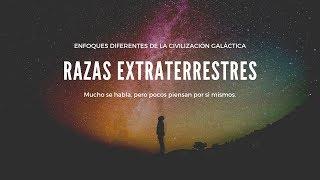 RAZAS EXTRATERRESTRES - Ivan Donalson