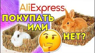 ТОВАРЫ ДЛЯ ЖИВОТНЫХ с AliExpress: ПОКУПАТЬ ИЛИ НЕТ?