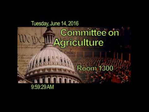 Subcommittee Public Hearing RE: G-20 clearing and trade execution requirements