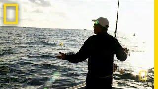 Captain ralph vs. googans | wicked tuna