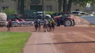 Vidéo de la course PMU PRIX DE CRICQUEBOEUF