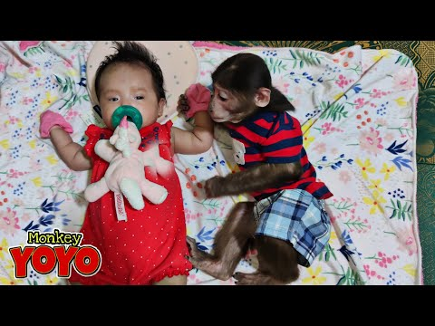 YoYo JR  is helping  dad to take care of  sister