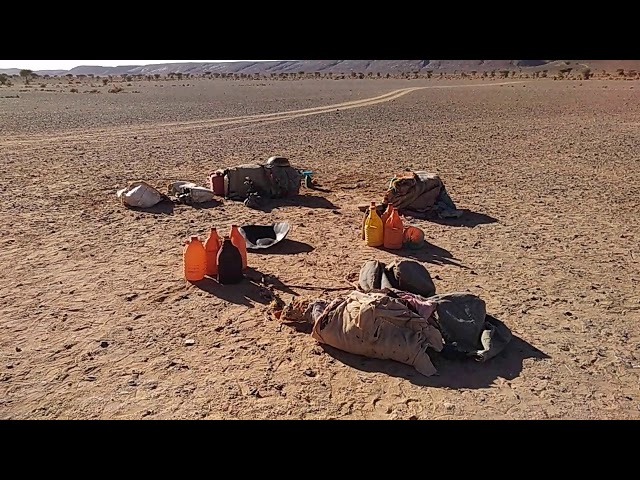 Das Nomadenleben Sahara Wüste Marokko Afrika