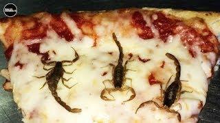 Después De Este Vídeo Odiarás La Pizza 🍕