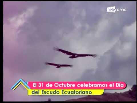 ¿Qué se celebra el 31 de Octubre?