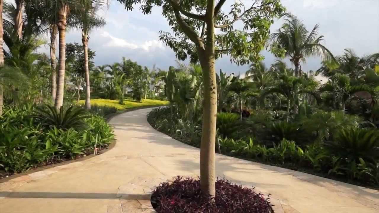 Jardines de m xico con todos los sentidos youtube for Jardines mexico