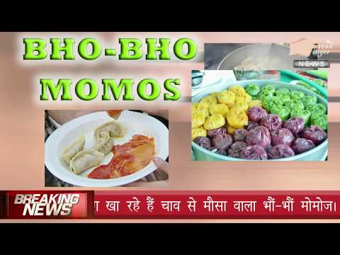 DeLhi kE BhO BhO MoMo'S | Fresh Finger