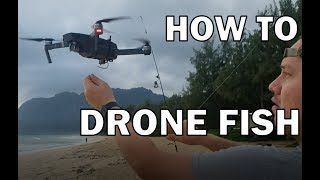 How to DRONE FISH step by step FOR FREE 2018
