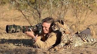 DIVERTIDAS FOTOS DE FOTÓGRAFOS Y ANIMALES SALVAJES. Photographers and animals