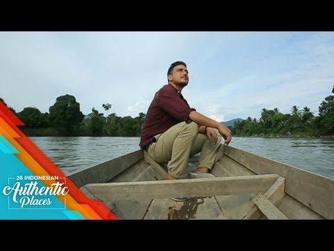 Indahnya Habitat Orang Utan di Berau Kalimantan  - 26 Indonesian Authentic Places (2/10)
