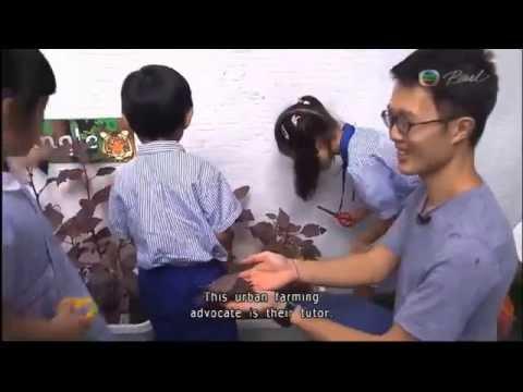 2014-06-22 Smiley Planet Green B TVB Pearl News at 730pm