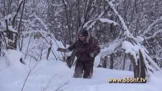 Охота на лис в Мильковском районе. Часть 1.