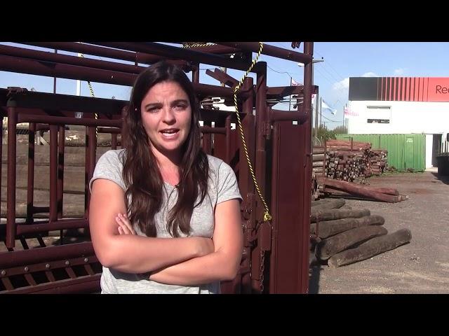🐄 Entrevista con Clara Mato de Mecano Ganadero ‼