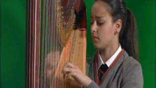 Noa Gabay - The Minstrel