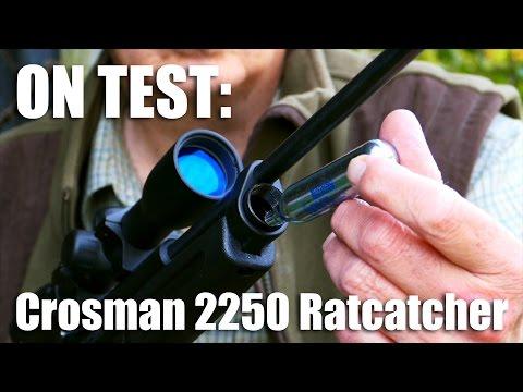 Crosman 2250 Ratcatcher airgun on test