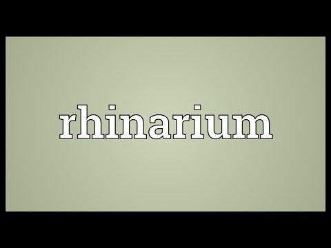 Header of rhinarium