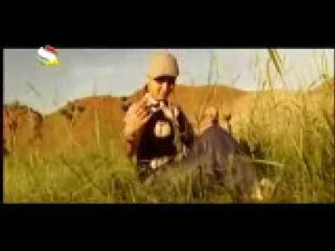 Download Feruza - Shabha hamash beh Meykhaneh miram