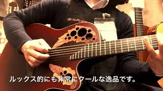 Ovation / Celebrity Elite CE44-RRB Reverse Red Burst 【イシバシ楽器心斎橋店】