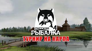 Карп обыкновенный на Старом Остроге ∘ Русская Рыбалка 4