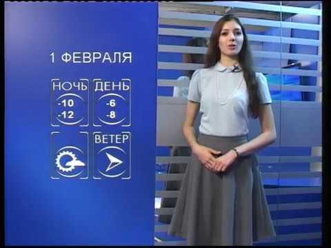Прогноз погоды: Курская область - 1 февраля