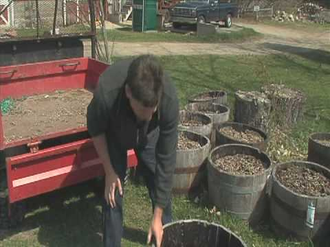 The Best Way To Plant A Whiskey Barrel Planter Youtube