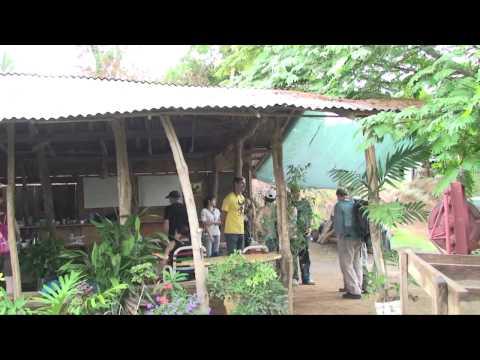 Roane State Community College - Costa Rica 2011