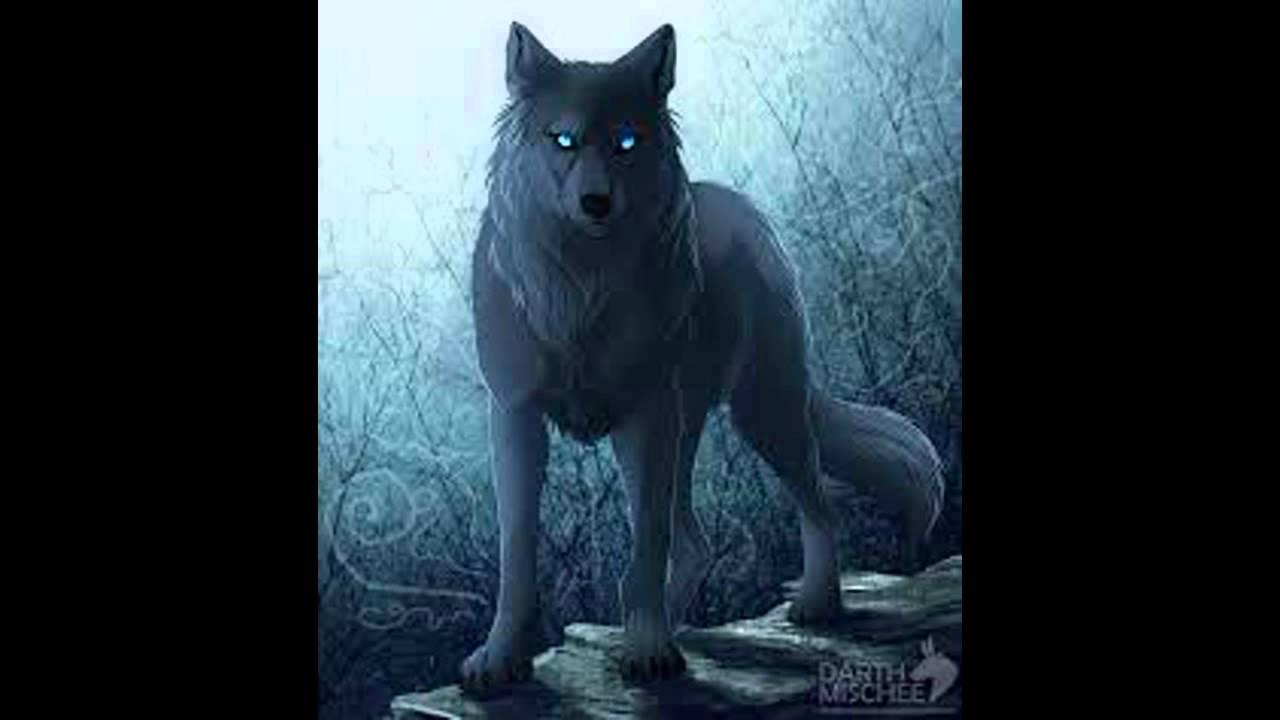 Say something anime sad wolf vid - YouTube