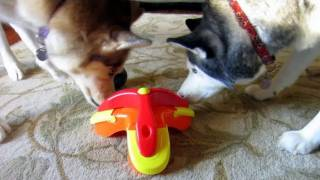 Treat Triad Puzzle Toy - Kyjen - Siberian Husky Approved - Boycott Boring Dog Toys thumbnail