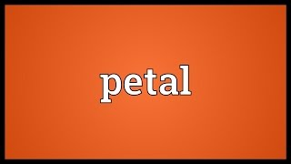 Petal Meaning