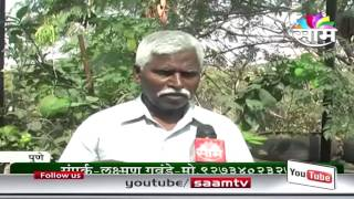 Laxman Gavande's terrace gardening success story