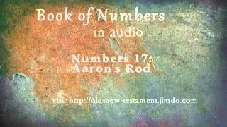 Numbers 17: Aaron's Rod