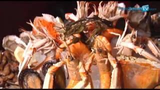LE SUFFREN restaurant brasserie parisienne fruits de mer paris 75015 www.pariszoomtv.com