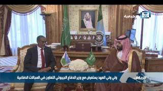 ولي ولي العهد يستعرض مع وزير الدفاع الجيبوتي التعاون في المجالات الدفاعية