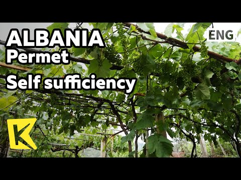 【K】Albania Travel-Permet[알바니아 여행-퍼르메트]자급자족하는 퍼르메트 사람들/Self sufficiency/Vegetable/Grape