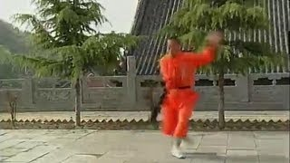 Repeat youtube video Shaolin long kung fu (chang quan)